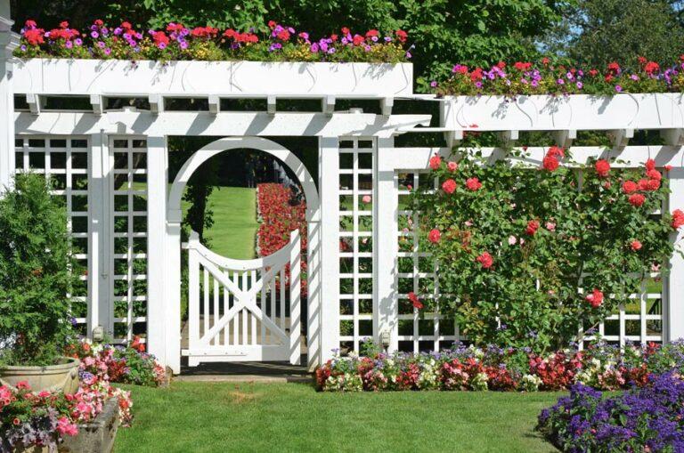 The Gardens of Castle Hills   Trellis